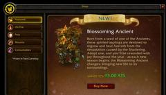 Blizzard opens World of Warcraft in-game shop stocked with $10 pets and $25 mounts